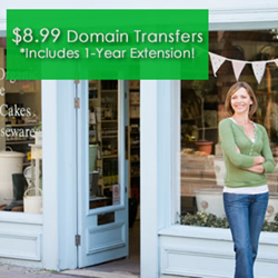 Domain name transfers