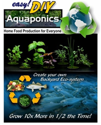 easy diy aquaponics system