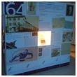 A look back at SIGVARIS' 150 year long history.