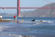 Six Places for Foggy Picnics – San Francisco Travel Association