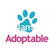 I am Adoptable - The Amazon.com of Pet Adoption?