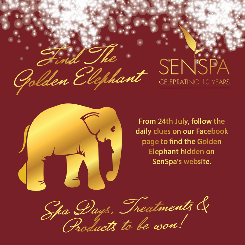 Award Winning Senspa Launches Birthday Competition To Celebrate 10 Years Looking for golden elephant background images? award winning senspa launches birthday competition to celebrate 10 years