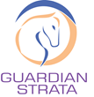 Guardian Strata: Award-winning Strata Manager Sets New Benchmark In...
