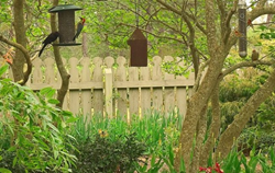 Callaway Gardens Southern Gardening Symposium