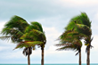 Continental National Bank Shares 9 Tips for Hurricane Preparedness