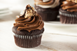 Visit My Smokies: Food Network Stars Open New Cupcake Shop in Pigeon...
