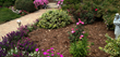 Professionals at Norway Gardens Discuss the Advantages of Using Cedar...
