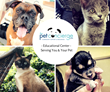 The Pet Concierge Community Center Hosts Grand Opening Event in the...