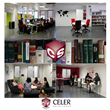Celer Soluciones, a translation company adapted to new technology