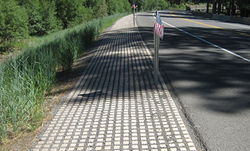 Drivable Grass Road Shoulder
