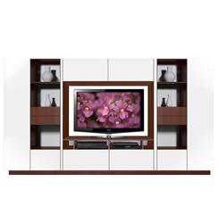 Flat Screen TV & Entertainent Wall Unit
