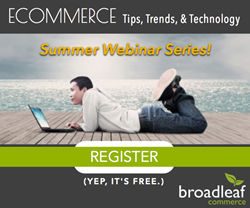 eCommerce Summer Webinar Series