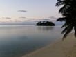 Discuss Melville in the South Pacific with Curious Oyster Seminars