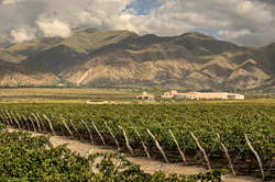 Gravity-flow-piattelli-winery-cafayate