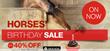 Horse Enthusiasts Receive Big Benefits, Horseland Celebrates the...