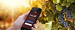 CorkageFee Launches Wine Directory