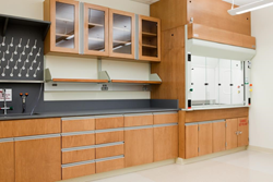 Hamilton Scientific's lab workstations, fume hoods and work surfaces for education, healthcare and industrial laboratory markets