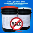 The Patented Technology of MoldExterm, Which Kills Mold Fast and...
