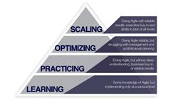 Portfolio Management for Agile at Scale