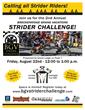 2014 BGV Strider Flyer