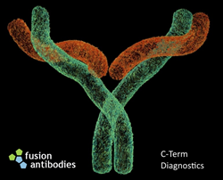 Fusion Antibodies and C-Term Diagnostics Announce Collaboration