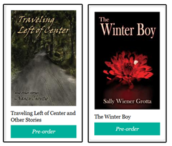 Fiction books on prepublication discount presale from Pixel Hall Press