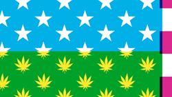The New York Times Marijuana