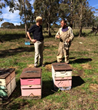 Lifetime Health Director, Antony Adare with local Australian beekeeper