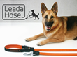 LeadaHose, Dog Leash With Built-In Hose, Launches on Kickstarter