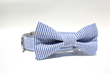 Blue and White Seersucker Dog Collar Bow Tie from Four Black Paws.