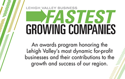 LVB Fastest Growing Companies 2014