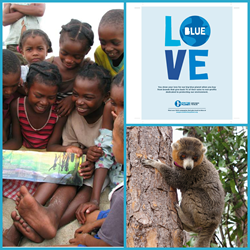 Lemur Conservation Foundation and 1% for the Planet