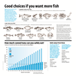 Consumer Reports Reveals Low-Mercury Fish Choices