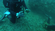 Captain Mayne picks up a piece of ore on the wreck site - Photo by Michael McCabe and Aqua Quest Films