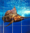 Pictured Tile Sword Fish Resort Wall