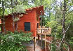 Lodging near Tail of the Dragon - River's Edge Treehouse Resort