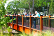 Water Works Park - Pedestrian Timber Bridge