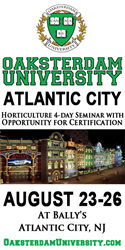Oaksterdam University, cannabis, marijuana, weed, pot. medicine, new jersey medical marijuana program, atlantic city, casino, ballys