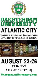 Oaksterdam University, cannabis, marijuana, weed, pot. medicine, new jersey medical marijuana program, atlantic city, casino, ballys