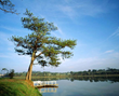 Smile Travel Vietnam Offers a New Tour to Dalat, a Romantic City in...