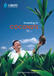 "Liquid Investments Releases Updated Investment Guide on ""Investing in Coconuts"""
