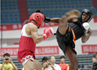 29th US Open Challenge with Shaolin KungFu and Exciting Fighting Show