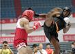 K. Warriors – KSF 31st US Open Martial Arts Challenge