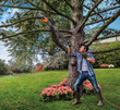 New WORX 2-in-1 Electric Pole Saw Is Ideal for Spring Yard Clean-up and Trimming