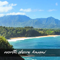 The Parrish Collection Kauai