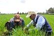 The Yara Prize honors leadership for the future of farming