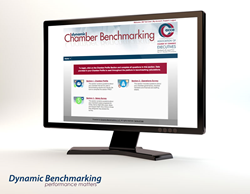 Online Benchmarking Survey Clients