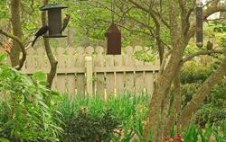 Callaway Gardens Habitat Symposium