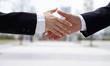 Igloo.com Provides Branding Expertise for Start-Ups and Established...