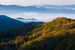 Thanks to Visit My Smokies, families and travelers now have a complete guide to all the different ways to experience fall in the Smoky Mountains.